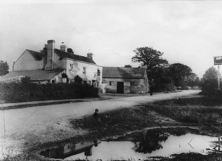 Old Fox and Pond c1905