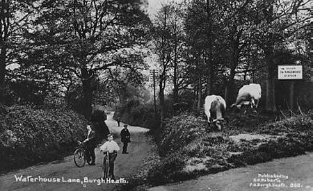 Waterhouse Lane Kingswood c1915