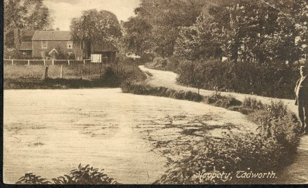 Tadworth Cottage c.1900
