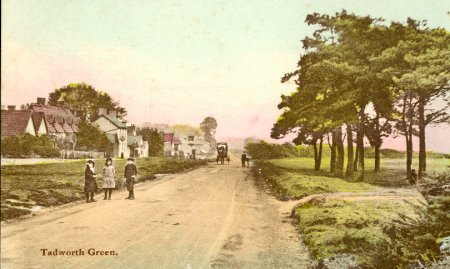 Tadworth Green c.1900